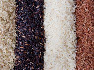Генетически модифицированный рис будет вакциной против холеры