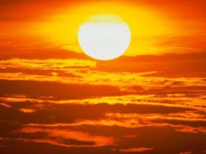 Солнце защищает от бактериальных инфекций