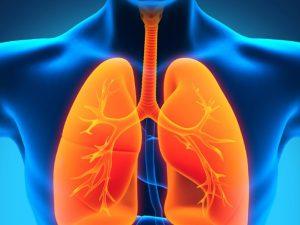 Туберкулез. Как заражаются. Восемь вопросов о недуге