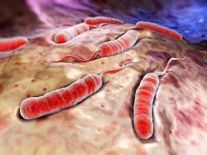 Вспышка холеры в Йемене набирает обороты