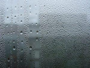 Высокая влажность защищает человека от гриппа
