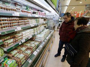 Птичий грипп взвинтил цены на яйца в Южной Корее