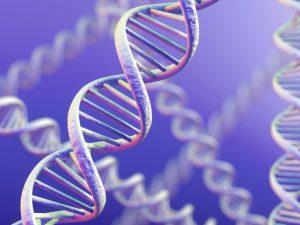 За заболевание гриппом в ответе гены