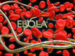 В Гвинее заработал первый российский центр по борьбе с Эболой