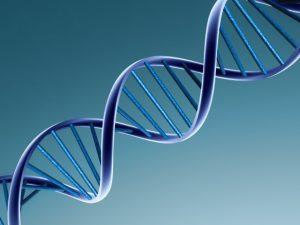 Ученые исследуют древние вирусы в ДНК человека