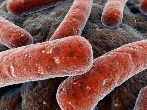 Туберкулез: в группе риска люди в состоянии стресса
