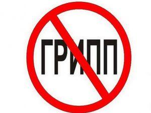 Эпидемия гриппа в Калужской области прекратилась