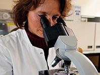 Ученые нашли белок, способный повысить эффективность вакцин