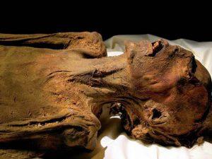Ученые изучат влияние эволюции на пищеварительную систему с помощью мумий