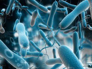 Что делать, чтобы избежать вспышек опасных инфекций?