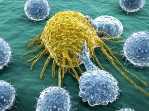 Открыт секрет происхождения неизлечимого рака