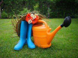 Дачные болячки: какие опасности подстерегают нас в огороде?