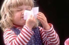 Ученые создали препарат от простуды