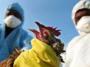 Эпидемия вируса в Чувашии стала принимать угрожающие масштабы
