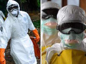 Опасный африканский вирус пробрался за пределы карантинной зоны