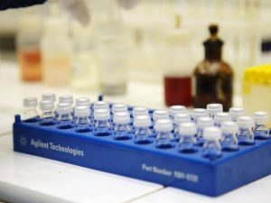 В России созданы эмбрионы, игнорирующие ВИЧ