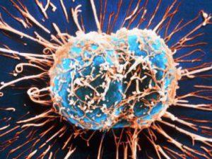 Ученые создали генномодифицированный вирус, убивающий рак