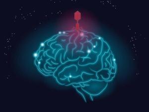 Новое открытие в профилактике болезни Альцгеймера