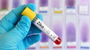 В Индии второй раз за год вспыхнул вирус Зика