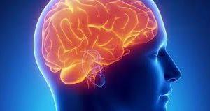 Сосудистые заболевания мозга. Все может начаться с головной боли