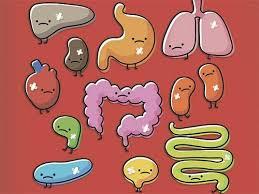 Ученые напомнили о возможных опасностях приема пробиотиков