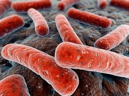 Смертность от туберкулеза постепенно снижается, говорят эксперты