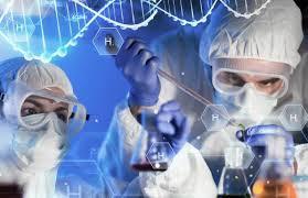 ФМБА: вакцина для профилактики поллиноза вышла на доклинические испытания