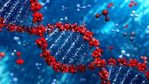 Геномные технологии требуют правовых основ