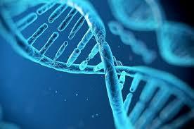 Анализ ДНК способен выявить потенциально опасную форму туберкулеза