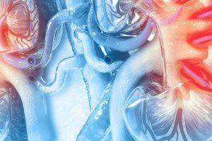 Новый препарат для лечения хронической почечной недостаточности успешно прошел КИ