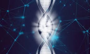 Ученые нашли новые гены, ответственные за развитие аутизма
