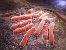 Новое средство против туберкулеза, не имеющее аналогов в мире, доказало эффективность