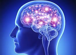 Коронавирус ведет к гибели клеток мозга