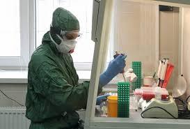 Российские ученые найдут животных, способных стать источником новых вспышек коронавируса