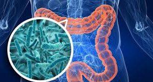 Бактерии управляют настроением
