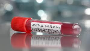 SARS-Cov-2 может вызывать гибель эритроцитов – российские ученые