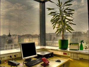 Фэн-шуй офиса